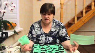 пикировка петунии в пеленки