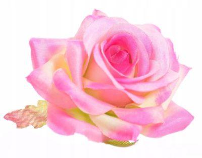 розово зеленые розы