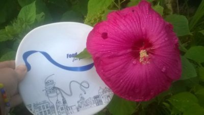 гибискус болотный выращивание из семян