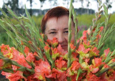 высадка гладиолусов в открытый грунт весной