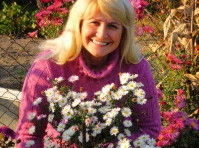 октябринки цветы размножение посадка и уход